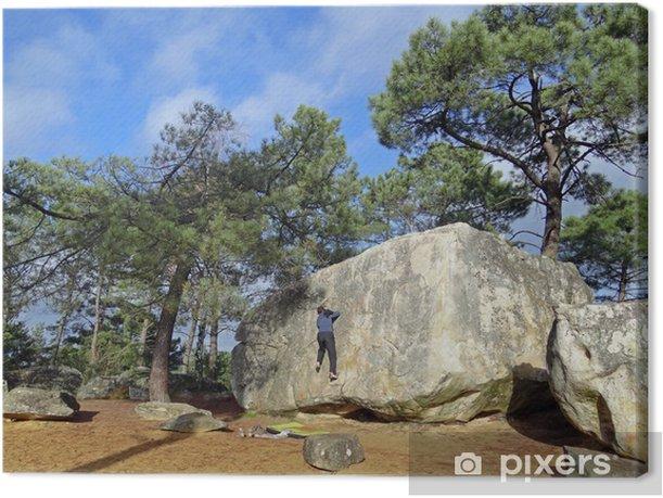 Obraz na płótnie Wspinaczka w Fontainebleau las (End Site rock) - Mecze i zawody