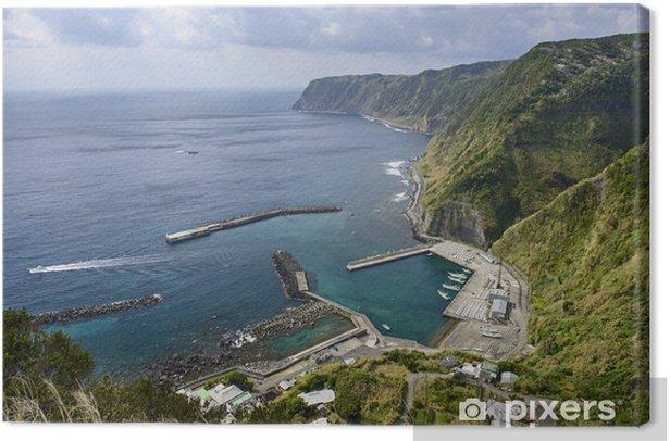 Obraz na płótnie Wybrzeże Hachijojima, Tokio, Japonia - Azja