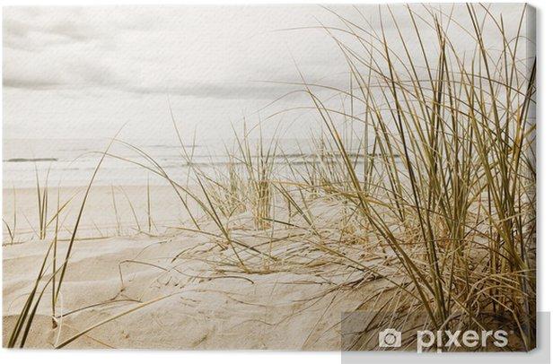 Obraz na płótnie Wysokie trawy na plaży w zbliżeniu - Przeznaczenia