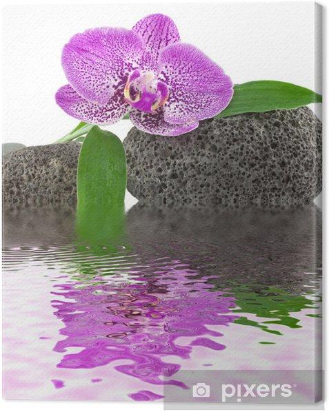 Obraz na płótnie Wystrój zen relaksu, orchidea, kamienie, bambus - Style