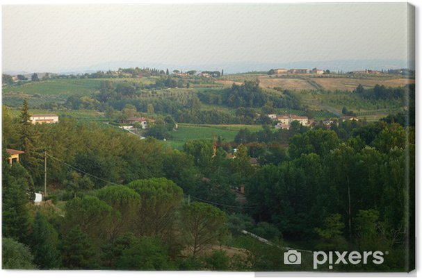 Obraz na płótnie Wzgórz Chianti DOC - Rolnictwo