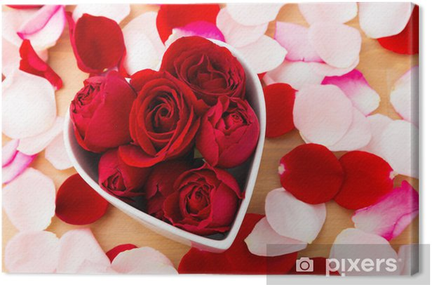 Obraz na płótnie Wzrosła wewnątrz kształt miski serca - Kwiaty