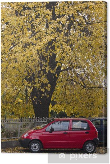 Obraz na płótnie Yello i czerwony samochód - Transport drogowy