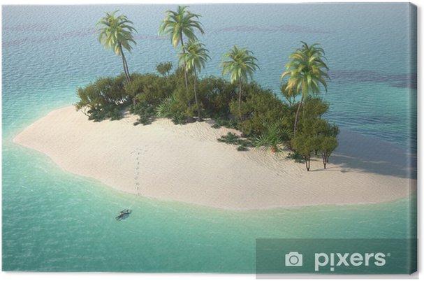 Obraz na płótnie Z lotu ptaka caribbeanl bezludnej wyspie - Wakacje