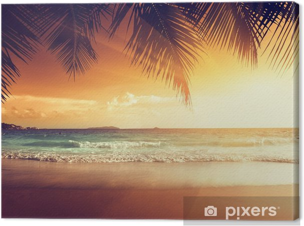 Obraz na płótnie Zachód słońca na plaży w Morzu Karaibskim - Palmy