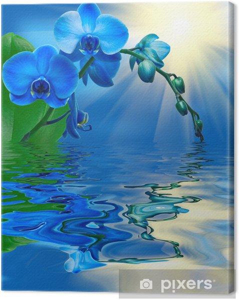 Obraz na płótnie Zamknąć się kwiat orchidei - Tematy