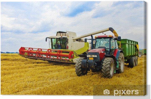 Obraz na płótnie Zbiorem roślin - Rolnictwo