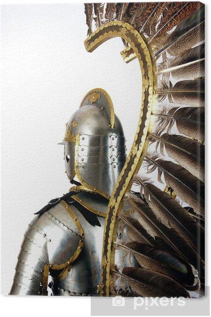 Obraz na płótnie Zbroja - Tekstury