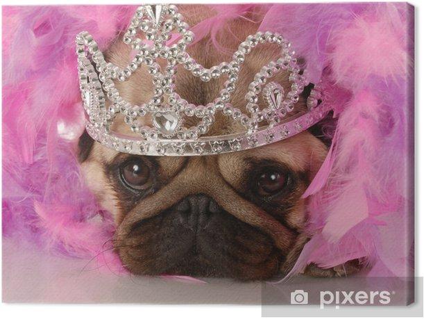 Obraz na płótnie Zepsute pies - adorable Mops ubrani jak księżniczka - Mopsy