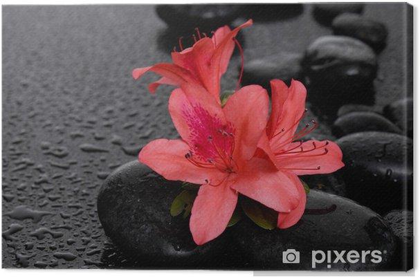 Obraz na płótnie Zestaw czerwonych lilii terapii kamieniami - Uroda i pielęgnacja ciała