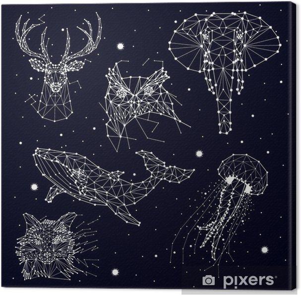 Obraz na płótnie Zestaw konstelacji, słonia, Sowa, jelenie, wieloryby, meduzy, Fox, gwiazda, grafiki wektorowej - Zwierzęta