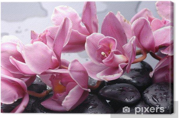 Obraz na płótnie Zestaw kwiat orchidei i kamień Cattleya z kropli wody - Tematy