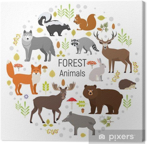 Obraz na płótnie Zestaw zwierząt leśnych w okręgu na białym tle. ilustracji wektorowych. Łoś, dzik, niedźwiedź, lis, królik, wilk, skunks, szop, sarny wiewiórki hendgehog - Zwierzęta
