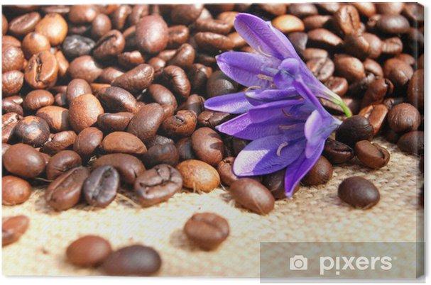 Obraz na płótnie Ziarna kawy - Gorące napoje