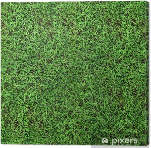 Obraz na płótnie Zielona trawa tekstury bez szwu - Tekstury