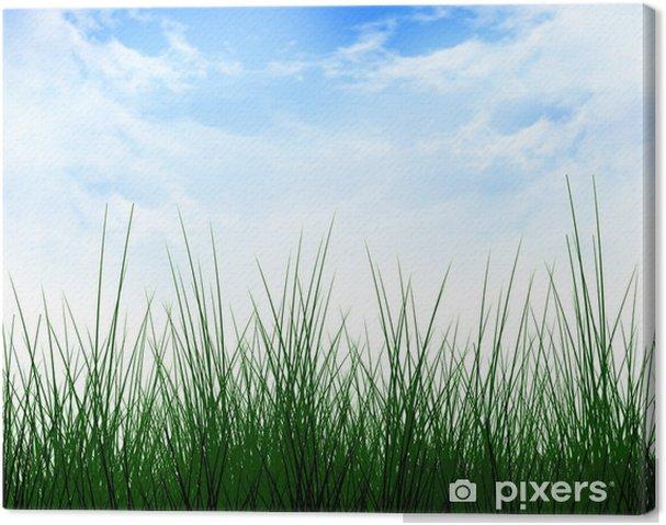 Obraz na płótnie Zielona trawa - Znaki i symbole