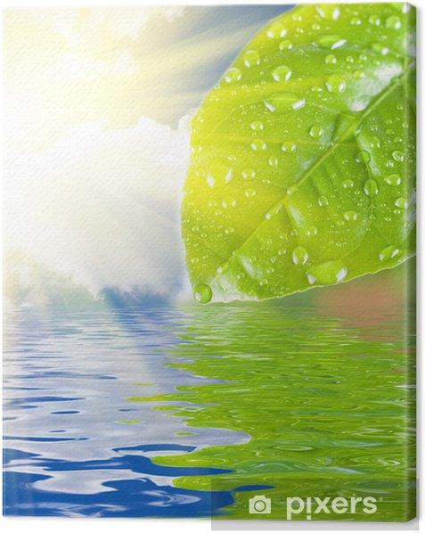 Obraz na płótnie Zielona woda urlop - Kwiaty