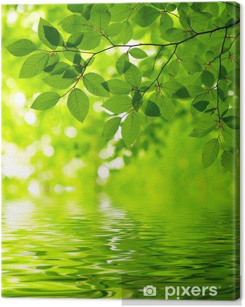 Obraz na płótnie Zielone liście -