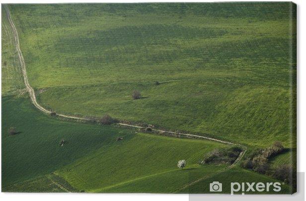 Obraz na płótnie Zielony aksamit - Krajobraz wiejski