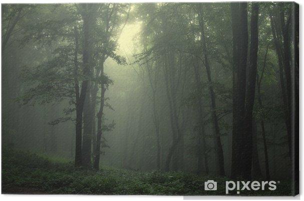 Obraz na płótnie Zielony las po deszczu - Style