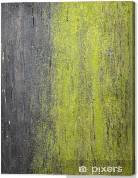 Obraz na płótnie Zielony mech w wieku drewniany postu - Tekstury