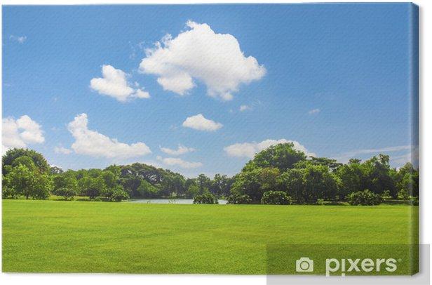 Obraz na płótnie Zielony park, z nieba chmury - Pory roku