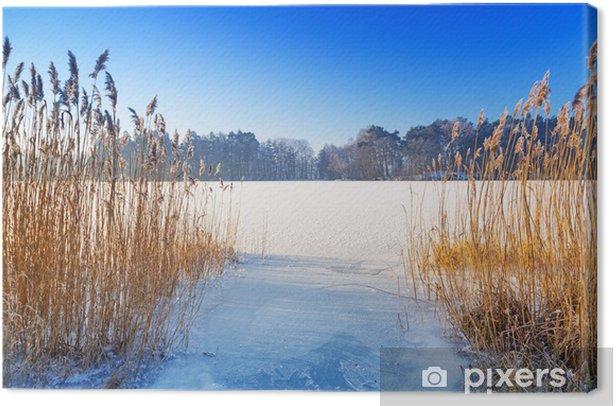 Obraz na płótnie Zimowe krajobrazy z zamarzniętego jeziora w Polsce - Pory roku