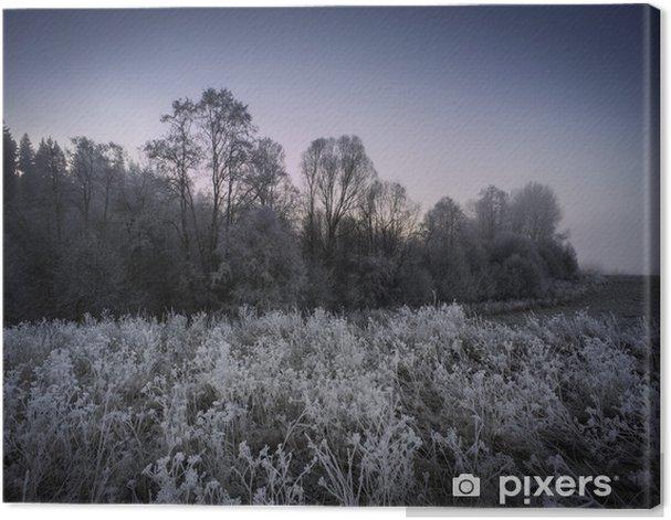 Obraz na płótnie Zimowy poranek fogy - mrożone krajobraz - Pory roku