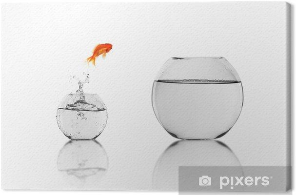Obraz na płótnie Złoty ryb w akwarium - Zwierzęta żyjące pod wodą