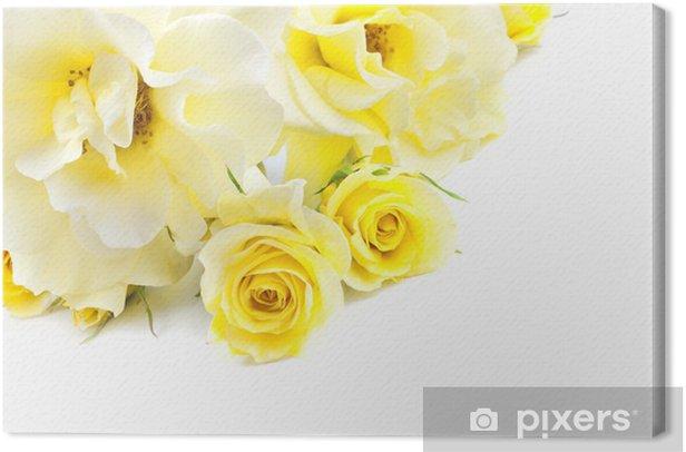 Obraz na płótnie Żółte Róże Na Białym Tle - Kwiaty
