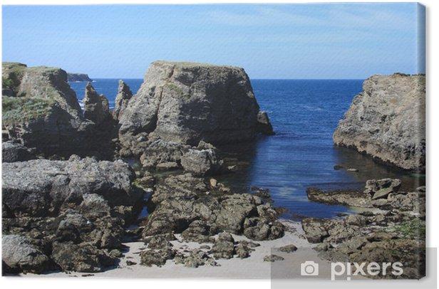 Obraz na płótnie Źrebięta, piękna wyspa morze - Criteo