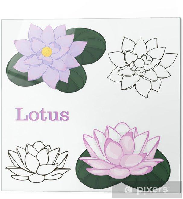 Obraz Na Szkle Kwiaty Lotosu Kontury Kwiatów Na Białym Tle