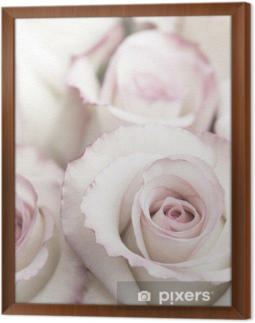Obraz na płótnie w ramie Lekkie Różowe róże - Rośliny i kwiaty