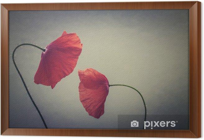 Obraz na płótnie w ramie Maki sztuki - Rośliny i kwiaty