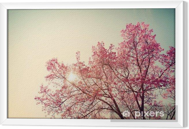 Obraz na płótnie w ramie Vintage wiśni - sakura kwiat. charakter tła (filtr retro efekt kolorystyczny) - Rośliny i kwiaty