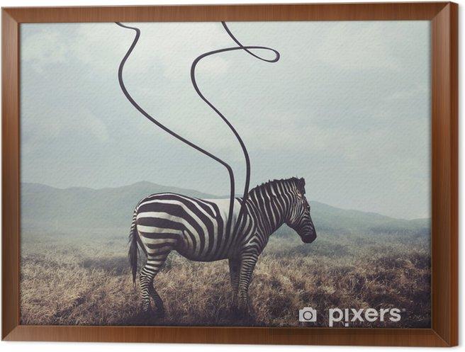 Obraz na płótnie w ramie Zebra i pasy - Zwierzęta