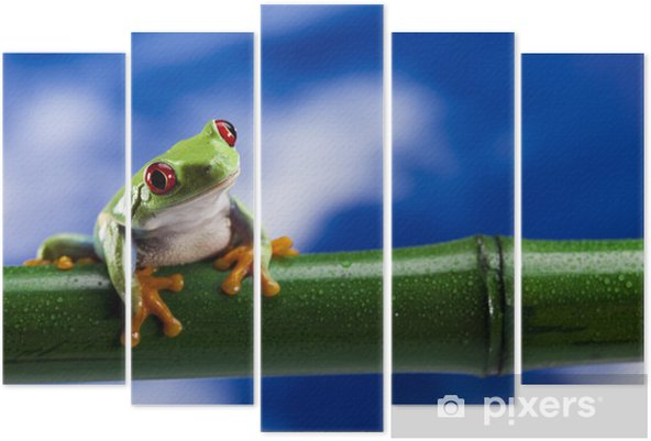 Green frog Pentaptych - Other Other