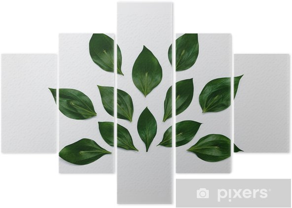 Minimalist plant background Bright green leaves are lying in abstract shape on a white background Flat lay Modern minimalistic photo template Pentaptych - Plants and Flowers