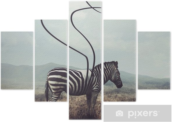 Zebra and stripes Pentaptych - Animals