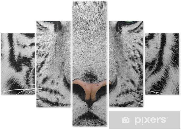 Pentaptyk Biały tygrys -
