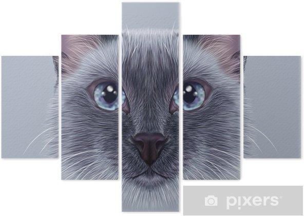 Pentaptyk Przykładami Portret Thai Cat. Ładny niebieski punkt Tradycyjne Siamese Cat. - Zwierzęta