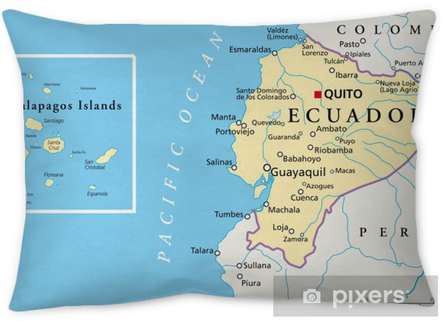 Ecuador and Galapagos Islands - Map Pillow Cover on puerto ayora, pinta island, amazon map, puerto baquerizo moreno, yucatan peninsula map, brazilian highlands map, cuba map, oman map, isabela island, bahamas map, lesser antilles map, ha long bay, genovesa island, puerto rico map, charles darwin research station, nameless island, greenland map, galapagos national park, cape horn map, strait of magellan map, patagonia map, japan map, darwin island, ecuador map, bay of fundy, pampas map, canada map, tierra del fuego map, pacific map, fernandina island, baltra island, lake titicaca map, floreana island, falklands map,