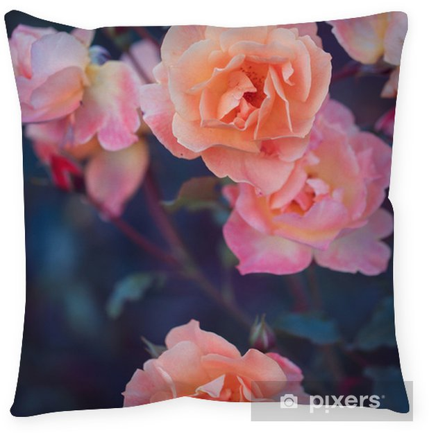 Garden roses. Flowers in nature. Vintage spring photo Pillow Cover - Plants and Flowers