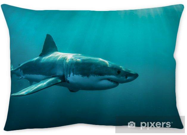 380a60460faf Great white shark underwater. Pillow Cover • Pixers® • We live to change