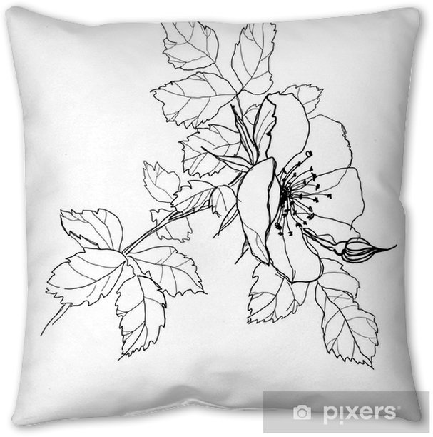 Rose Flower Pencil Drawing Pillow Cover Pixers We Live To Change