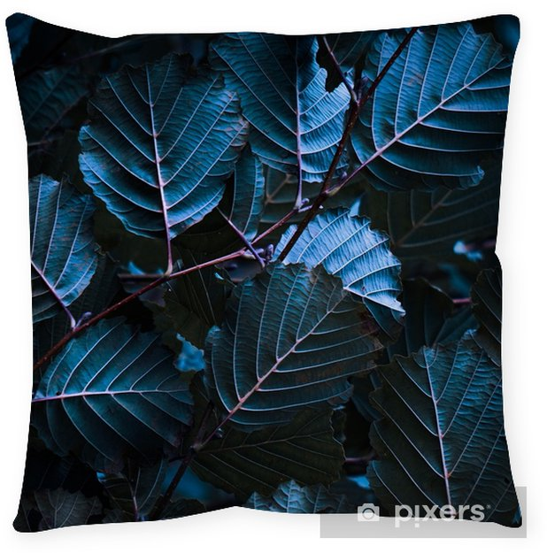 the colorful leaves Pillow Cover - Plants and Flowers