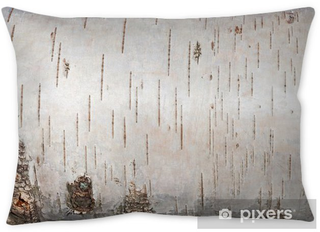 white birch bark  close up background texture pillow cover