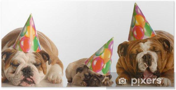Plakat For mye fest - tre hunder med bursdagshatter • Pixers® - Vi ... c1ef58cdb8942