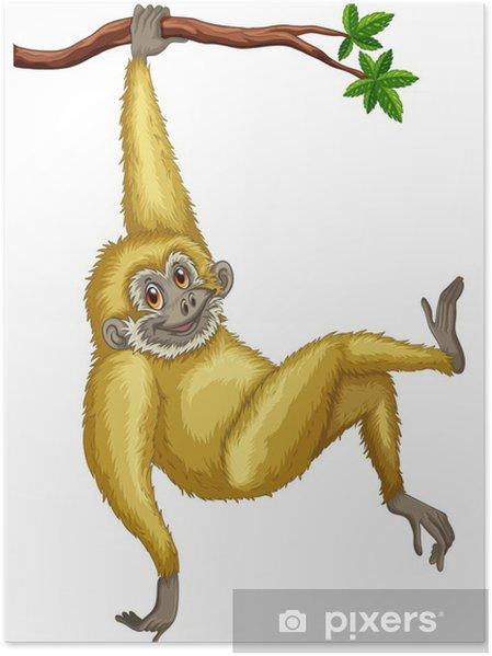 Monkey Plakat - Pattedyr