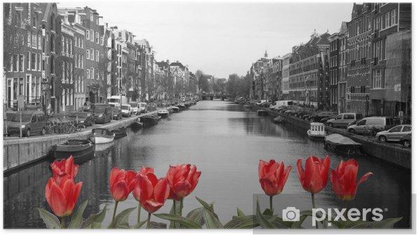 Røde tulipaner i Amsterdam Plakat -